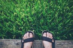 Sandalen in den Ferien Lizenzfreie Stockfotografie