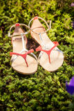 Sandalen, die eleganten Schuhe der Frauen in der Natur Stockfotografie