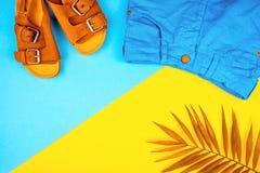 Sandalen, kurze Hosen und ein Zweig von Palmen auf einem modischen Hintergrund der gelb-blauen Farbe stockbild