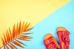 Sandalen und ein Zweig von Palmen auf einem modischen Hintergrund der gelb-blauen Farbe stockfotos