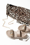 Sandaler och damasker för kvinna` s Arkivbilder