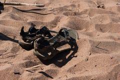 Sandales dans le sable Photo stock