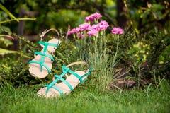 Sandali che appendono su un cespuglio, le scarpe delle donne Fotografia Stock