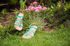 Sandali che appendono su un cespuglio, le scarpe delle donne Fotografie Stock Libere da Diritti