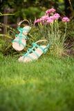 Sandali che appendono su un cespuglio, le scarpe delle donne Fotografia Stock Libera da Diritti