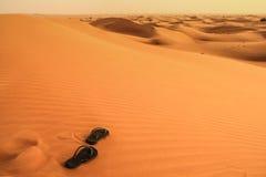 Sandali nel deserto Immagine Stock Libera da Diritti