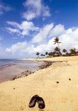 Sandali in spiaggia di poipu, Hawai immagine stock