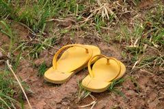 Sandalias Imagen de archivo libre de regalías