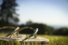 Sandalias en hierba Fotos de archivo libres de regalías