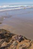 Sandalias en las rocas Imagen de archivo libre de regalías