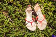 Sandalias, los zapatos elegantes de las mujeres en naturaleza Fotos de archivo