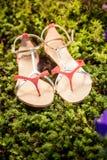 Sandalias, los zapatos elegantes de las mujeres en naturaleza Fotografía de archivo