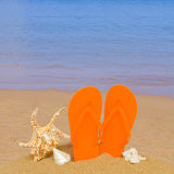 Sandalias y conchas marinas anaranjadas en arena en la playa Fotografía de archivo