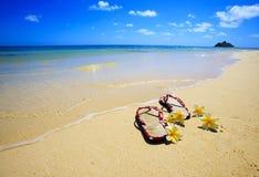 Sandalias y flores en una playa de Hawaii Imágenes de archivo libres de regalías
