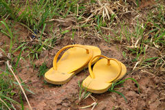 Sandals. A farmer put off sandals and goes on growing rice in the open field royalty free stock image
