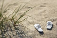 Sandals on beach. Stock Photography