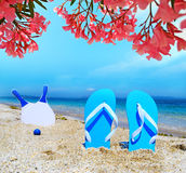 Sandals and beach rackets under pink flowers Royalty Free Stock Photography