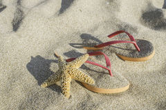 Sandals on the beach in the sand Royalty Free Stock Photography
