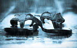 Sandals in de Regen Stock Afbeelding