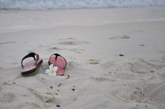 Sandals and flower on the beach stock photos