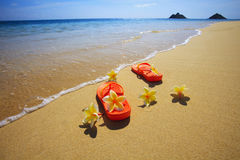 Sandals and flowers on a Hawaii beach Stock Images