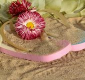 Sandals with flowers red in the sand Royalty Free Stock Photography