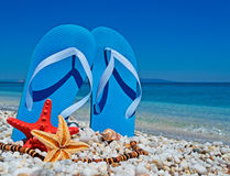 Sandals and palms Royalty Free Stock Photo