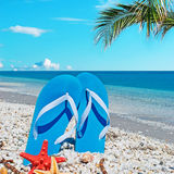 Sandals and palms Royalty Free Stock Images