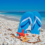 Sandals and sea stars Stock Photo