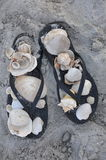 Sandals and Shells Stock Photography