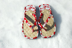 Sandals in the Snow Stock Image