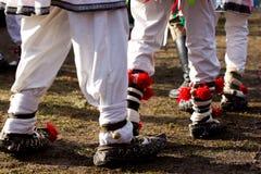 Sandals van de boer stock foto's