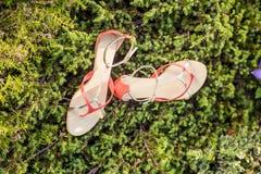 Sandals van de vrouwenzomer liggen op het gras royalty-vrije stock foto's