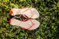 Sandals van de vrouwenzomer liggen op het gras royalty-vrije stock afbeeldingen