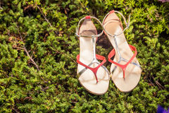 Sandals, women's elegant shoes in nature. A Stock Photos