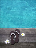 Sandals on a wooden floor. Women sandals on a wooden floor with flowers near the water Stock Image