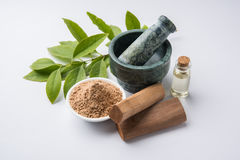 Sandalwood or chandan powder and paste Stock Image