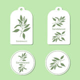 Sandalwood tree branch Tags and Labels Stock Image