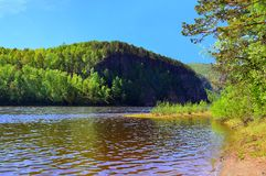 Sandausdehnung Der Fluss weit in das Holz Blühender Apfelbaum Der Fluss UDA Ruinen der alten Kirche nach Russland, Sibirien Lizenzfreies Stockbild