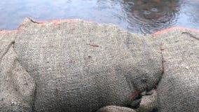 Sandbag Wall Flooding dolly shot stock footage