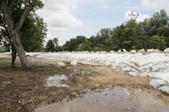 sandbags Fotografia Stock
