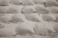 Sandbags on beach Royalty Free Stock Images