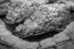 Sandbags at the flood Stock Photography