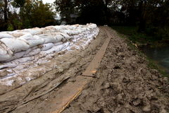 Sandbags flood protection on a muddy levy. Sandbags flood protection put in a row on a muddy levy with trail made from wooden planks on a rainy day with trees Stock Image