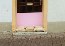 Sandbags in front of a door Royalty Free Stock Photos