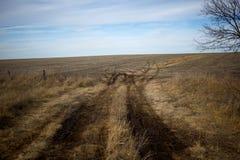 Sandbahn, die durch trockenes grasartiges Ackerland führt Stockbild