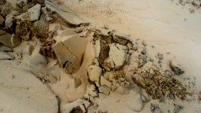 Sandbakgrundstextur - Closeup av brun sand arkivbilder