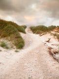 Sandbana till och med dyn Arkivfoton