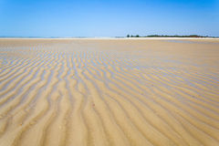 Sandbank at low tide Stock Images