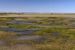 Sandbank outflow. Sea coast and outflow in Toliara, Madagascar Royalty Free Stock Photos